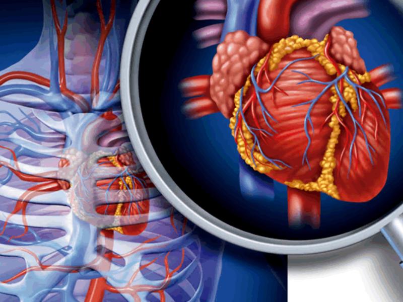 presión arterial y cardio fitness