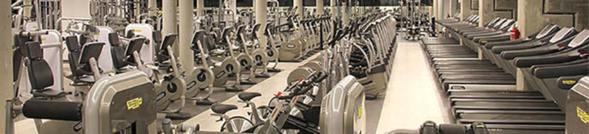 Gym Body Factory